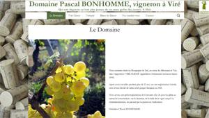Domaine Pascal BONHOMME à Viré-Clessé - RIEL